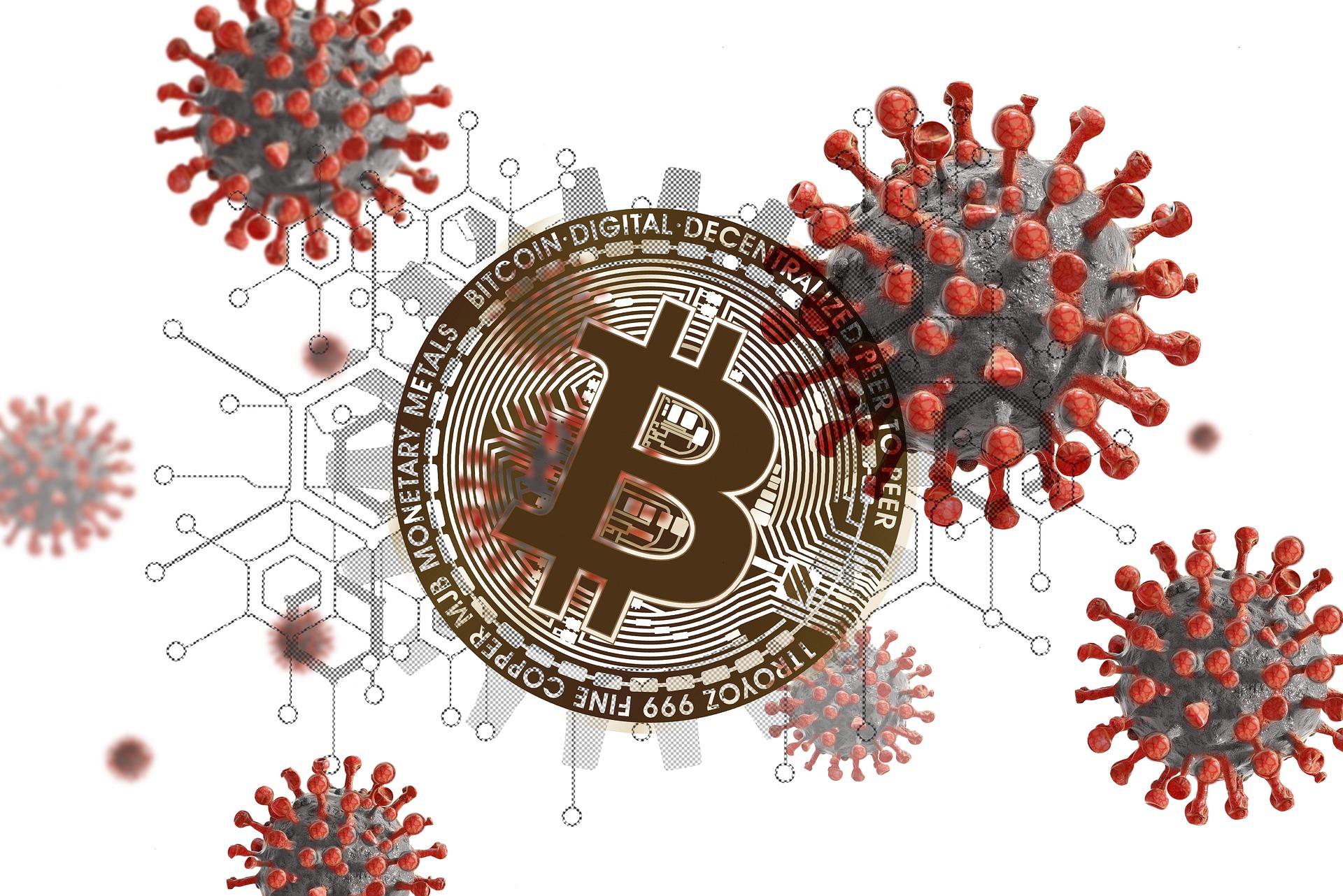 Bitcoin is COVID immune!   EurekAlert! Science News